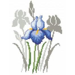 Zahlmuster online - Frühlingsblumen-Schwertlilien