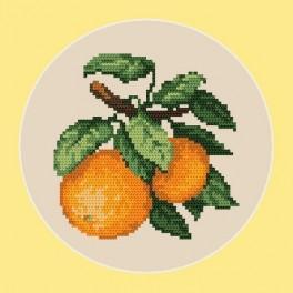 Zahlmuster online - Süße Orangen - B. Sikora-Malyjurek