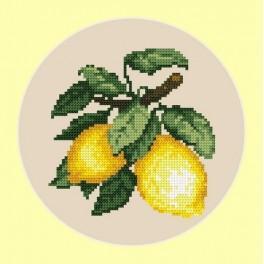 Appetitliche Zitronen - B. Sikora-Malyjurek - Aida mit Aufdruck