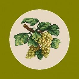 Weiße Weintrauben - B. Sikora-Malyjurek - Aida mit Aufdruck