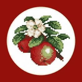 AN 4686 Saftige Äpfel - B. Sikora-Malyjurek - Aida mit Aufdruck