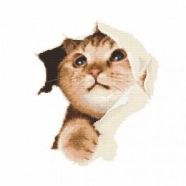 Schelmische Katze - Aida mit Aufdruck