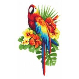 Märchenhafter Papagei - Aida mit Aufdruck