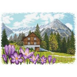 Krokusse in den Alpen - Aida mit Aufdruck