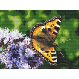 Schmetterling - Aida mit Aufdruck