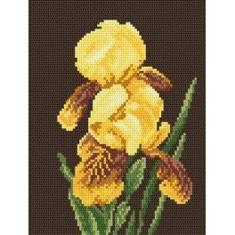 Die gelben Irisse - Aida mit Aufdruck