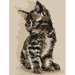 Eine Katze - Aida mit Aufdruck