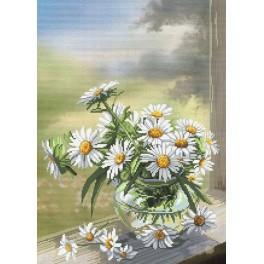 Stickpackung mit Stickgarn und Hintergrund - Kamillenblumen
