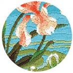 Set mit Stickgarn - Bunter Kolibri