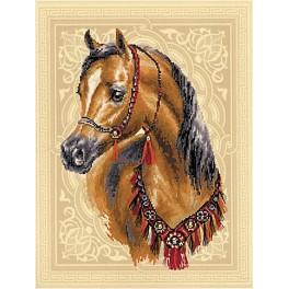 Stickpackung mit Stickgarn und Hintergrund - Arabisches Pferd