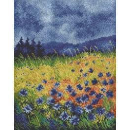 Stickpackung - Blauer Himmel über Kornblumen