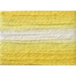 956AC-4018 Multicolor-Stickgarn ARIADNA