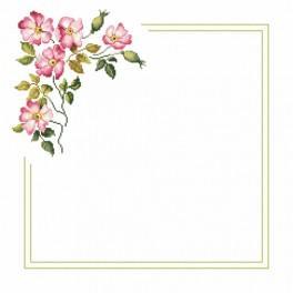 Zestaw z muliną i serwetką - Serwetka z dziką różą