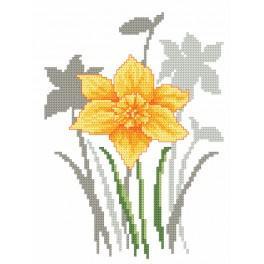 Set mit Aida mit Aufdruck und Stickgarn - Frühlingsblumen-Jonquillen