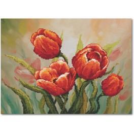 Aida z podmalowanym tłem - Dostojne tulipany
