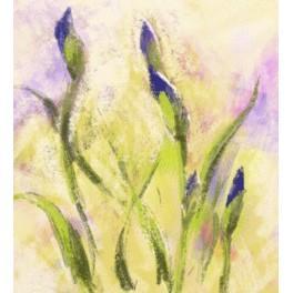 Malerische Schwertlilien - Aida Stoff mit Hintergrund