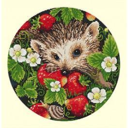 MER K-36 Stickpackung - Erdbeeren