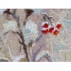 Stickpackung und Korallen - Wintergast
