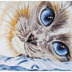 Set mit Stickgarn - Saphirblaue Augen
