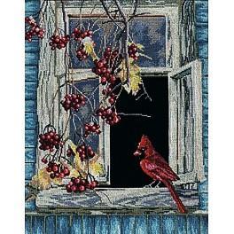 Stickpackung - Altes Fenster