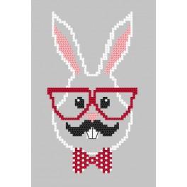 Zählmuster online - Karte - Hipster rabbit boy