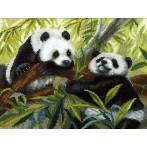 Stickpackung - Pandas