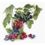 Stickpackung - Sommerfrüchte
