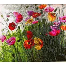 Stickpackung - Mohnblumen im Feld