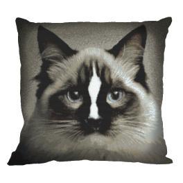 Zählmuster - Kissen - Katze ragdoll