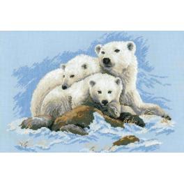 Set mit Wollgarn - Eisbären