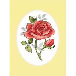 Stickpackung mit Stickgarn und Karte - Rose