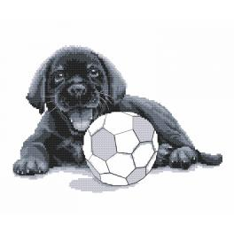Zählmuster - Labrador - Spiel mit mir