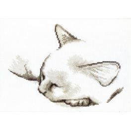 Stickpackung - Schlafendes Kätzchen