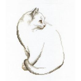 Stickpackung - Graues Kätzchen