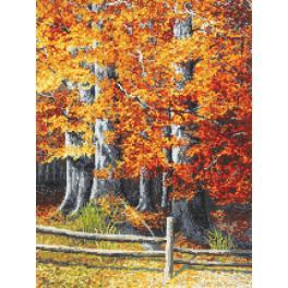 Zahlmuster online - Herbstbuchen