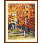Stickpackung - Herbstbuchen