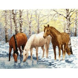 Stickpackung - Pferde am Fluss