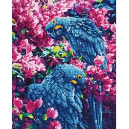 DD10.002 Diamond Painting Set - Blaue Papageien