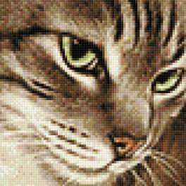 Diamond Painting Set - Geheimnisvolle Katze