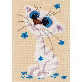 Stickpackung - Kleines weißes Kätzchen