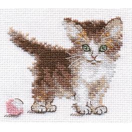 Stickpackung - Kleines Kätzchen