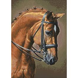 Diamond Painting Set - Pferd