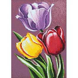 Diamond Painting Set - Wohlriechende Tulpen