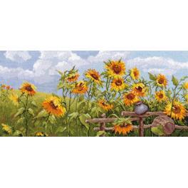 Stickpackung - Sonnenblumenfeld