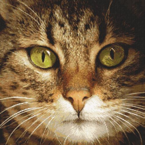 Diamond Painting Set - Katze Lucky