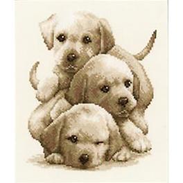 Stickpackung - Labrador-Welpen