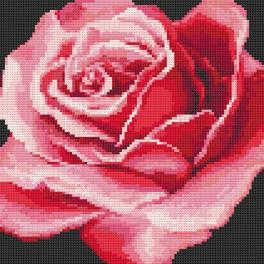 Diamond Painting Set - Rote Rose