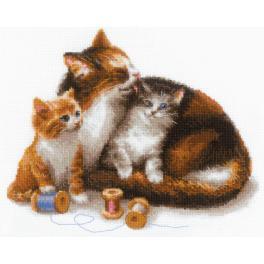 Set mit Wollgarn - Kätzin mit Kätzchen