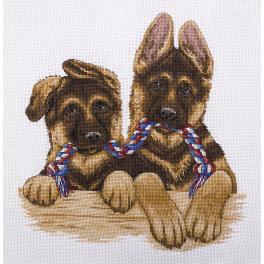 Stickpackung - Zwillingsschäferhunde