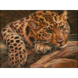Diamond Painting Set - Leopard